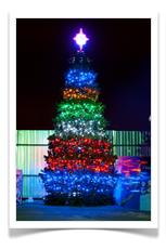 Световая елка вечером