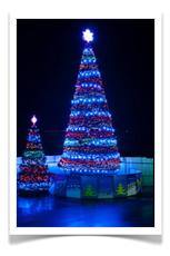 Светодинамическая Царь елка